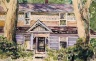 Purple House in Woods