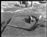 Rapid Transit Photographs -- Box 14, Folder 37 (February 2, 1921 - February 3, 1921) -- negative, 1921-02-03, 10:47 A.M.