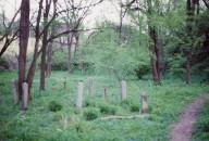 Fulton-Presbyterian Cemetery