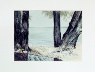 Trees on Shoreline