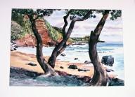 Seashore through Trees