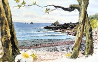 Trees and Flower at Coastline