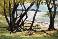Coastal Scene through Trees