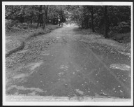 Street Improvement Photographs -- Box 21, Folder 08 (Arnold Avenue) -- print, 1932-08-25