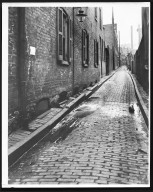 Street Improvement Photographs -- Box 21, Folder 39 (Bright Alley) -- print, 1921