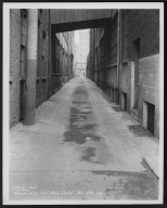 Street Improvement Photographs -- Box 27, Folder 68 (Phoebe Alley) -- print, 1931-03-13