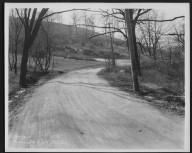 Street Improvement Photographs -- Box 29, Folder 40 (Tusculum Avenue) -- print, 1928-03-22