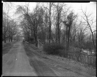 Street Improvement Photographs -- Box 33, Folder 42 (Davenant Avenue) -- negative, 1929
