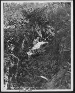Street Improvement Photographs -- Box 48, Folder 04 (April 29, 1932 - June 8, 1932) -- print, 1932-06-08, 4:30 P.M.
