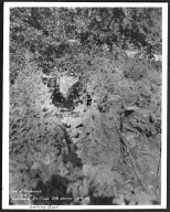 Street Improvement Photographs -- Box 48, Folder 05 (June 8, 1932 - September 9, 1932) -- print, 1932-06-08, 4:30 P.M.