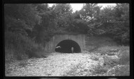 Miscellaneous Photographs -- Box 54, Folder 19 (Hillside Avenue & Old Rapid Run Near Lower River Road) -- negative, 1940-08-30