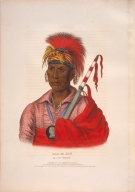 [History of the Indian Tribes of North America, Tah-ro-hon, an Ioway warrior]