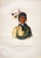 [History of the Indian Tribes of North America, No-tin, a Chippewa chief]