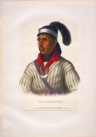 [History of the Indian Tribes of North America, Apauly-Tustennuggee]