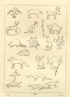 [Animal Figures in Picture-Writing, Letters and Notes on the Manners, Customs, and Condition of the North American Indians.]