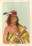 [The Manners, Customs, and Condition of the North American Indians., Big Eagle (or Black Dog), chief of the O-hah-kas-ka-toh-y-an-te Band]
