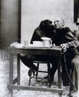 A Gorilla with a Man