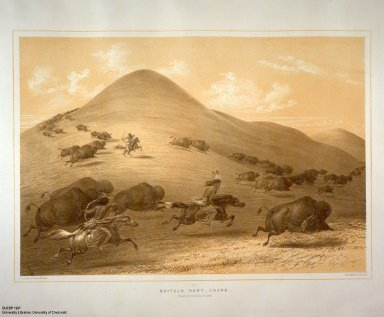 [Catlin's North American Indian Portfolio. Hunting Scenes and Amusements of the Rocky Mountains and Prairies of America., Buffalo Hunt, Chase.]