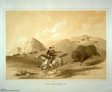 [Catlin's North American Indian Portfolio. Hunting Scenes and Amusements of the Rocky Mountains and Prairies of America., Buffalo Hunt, Chasing Back.]