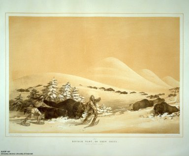 [Catlin's North American Indian Portfolio. Hunting Scenes and Amusements of the Rocky Mountains and Prairies of America., Buffalo Hunt, on Snow Shoes.]