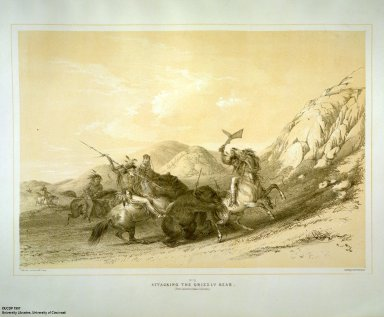 [Catlin's North American Indian Portfolio. Hunting Scenes and Amusements of the Rocky Mountains and Prairies of America., Attacking the Grizzly Bear.]