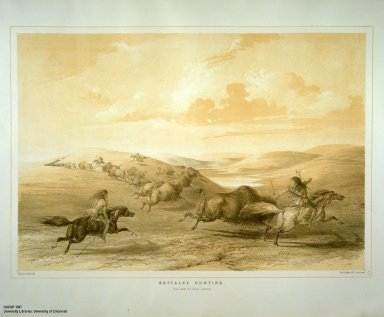 [Catlin's North American Indian Portfolio. Hunting Scenes and Amusements of the Rocky Mountains and Prairies of America., Buffaloe Hunting.]