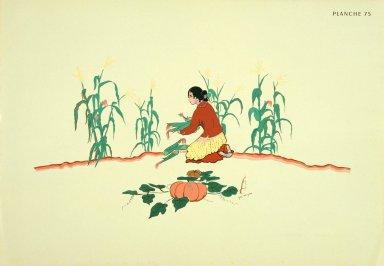 [Les peintres indiens d'Amérique, American Indian painters, Picking Corn Maiden]