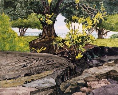 Coastline with Trees