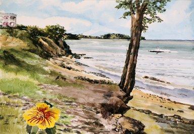 Beach with Grassy Shore
