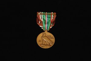 WWII European, African, Middle Eastern Campaign Medal With Two Campaign Stars (back view)
