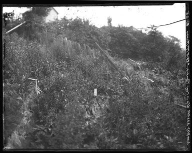 Rapid Transit Photographs -- Box 19, Folder 36 (June 8, 1927) -- negative, 1927-06-08, 3:22 P.M.