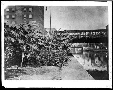 Rapid Transit Photographs -- Box 20, Folder 34 (July 14, 1928 - September 4, 1928) -- negative, 1928
