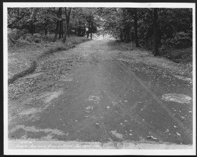 Street Improvement Photographs -- Box 21, Folder 08 (Arnold Avenue) -- print, 1932-08-25