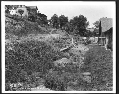Street Improvement Photographs -- Box 25, Folder 21 (Kleemeier Avenue) -- print, 1930-05-20