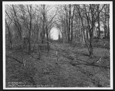 Street Improvement Photographs -- Box 27, Folder 56 (Pandora Avenue) -- print, 1937-03-05