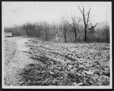 Street Improvement Photographs -- Box 29, Folder 26 (Temple Avenue) -- print, 1936-01-09