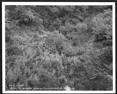 Street Improvement Photographs -- Box 29, Folder 36 (Torrence Road) -- print, 1937-09-01