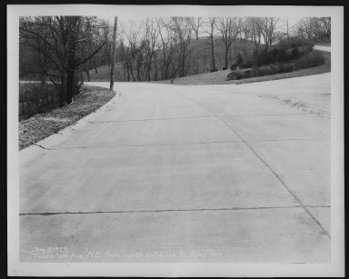 Street Improvement Photographs -- Box 29, Folder 40 (Tusculum Avenue) -- print, 1929-01-08