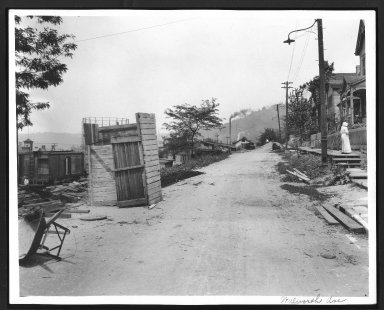 Street Improvement Photographs -- Box 29, Folder 65 (Walworth Avenue) -- print, 1917-06-08