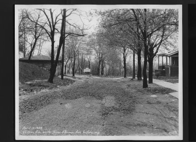 Street Improvement Photographs -- Box 30, Folder 19 (Wilson Avenue) -- print, 1929-04-10