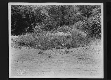 Street Improvement Photographs -- Box 30, Folder 31 (Woodlawn Avenue) -- print, 1929-08-05