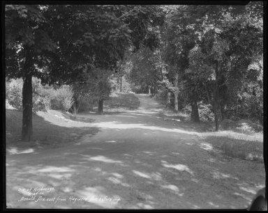 Street Improvement Photographs -- Box 31, Folder 06 (Arnold Avenue) -- negative, 1932-08-26