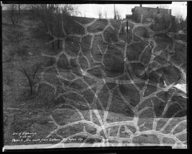 Street Improvement Photographs -- Box 32, Folder 08 (Beech Avenue) -- negative, 1932-03-24