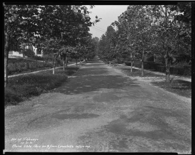 Street Improvement Photographs -- Box 32, Folder 22 (Bona Vista Street) -- negative, 1931-10-21