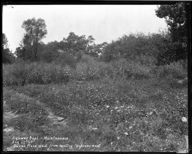 Street Improvement Photographs -- Box 33, Folder 44 (Davies Place) -- negative, 1929-08-23
