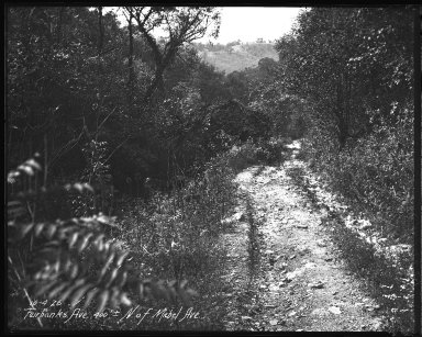 Street Improvement Photographs -- Box 35, Folder 15 (Fairbanks Avenue) -- negative, 1926-10-04
