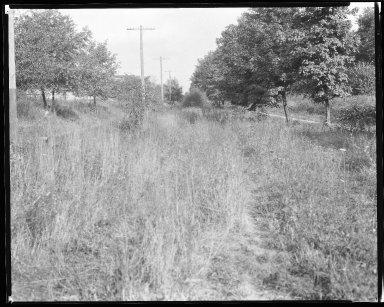 Street Improvement Photographs -- Box 38, Folder 09 (Kirkup Avenue) -- negative, 1929