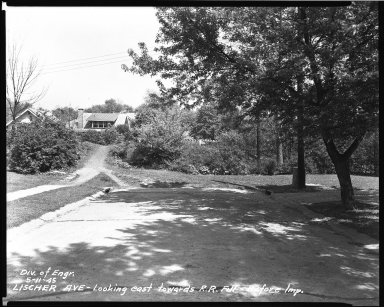 Street Improvement Photographs -- Box 39, Folder 22 (Lischer Avenue) -- negative, 1945-05-11