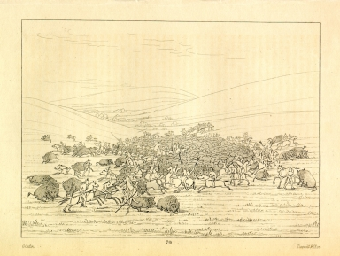 [Buffalo chase, a surround by the Hidatsa, Letters and Notes on the Manners, Customs, and Condition of the North American Indians.]