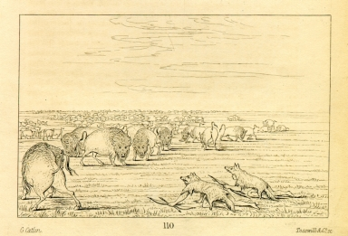 [Buffalo hunt under the wolf-skin mask, Letters and Notes on the Manners, Customs, and Condition of the North American Indians.]
